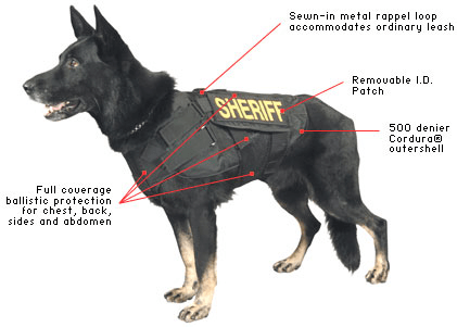 Selecting k9 PPE
