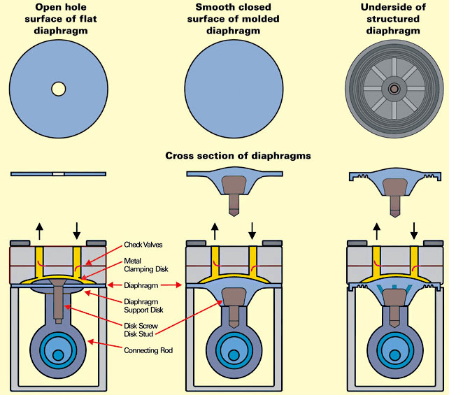 Cross Section of Diaphragm Pump drawing