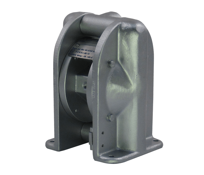 Cast Iron Diaphragm Pump image