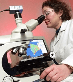 Scientist using microscope courtesy M+P Labs