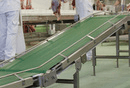 Conveyor Belts Selection Guide