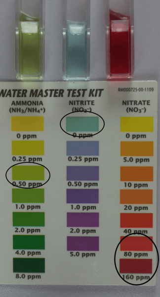 water quality colorimeters and photometers selection guide