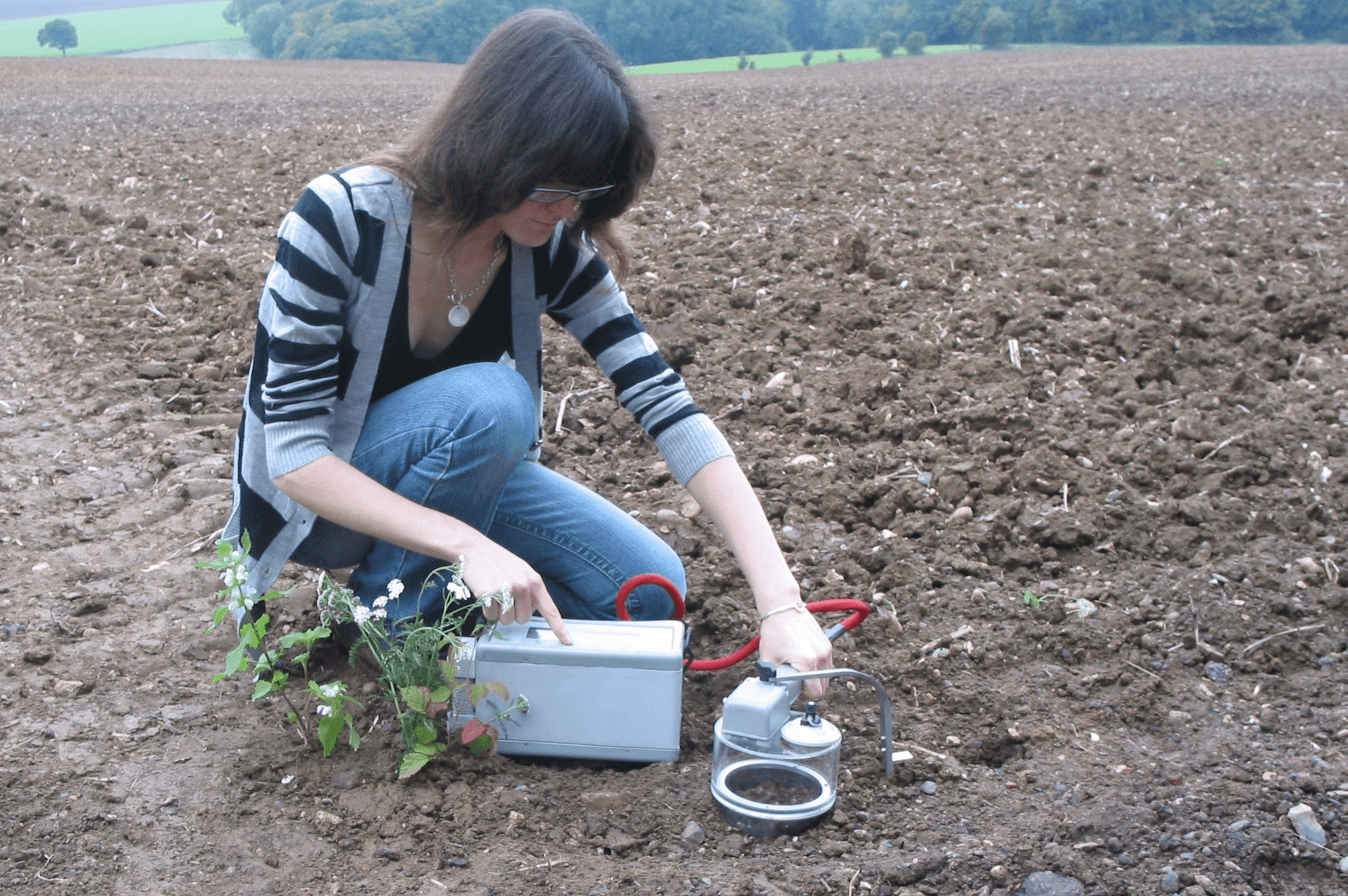 Selecting soil analysis services