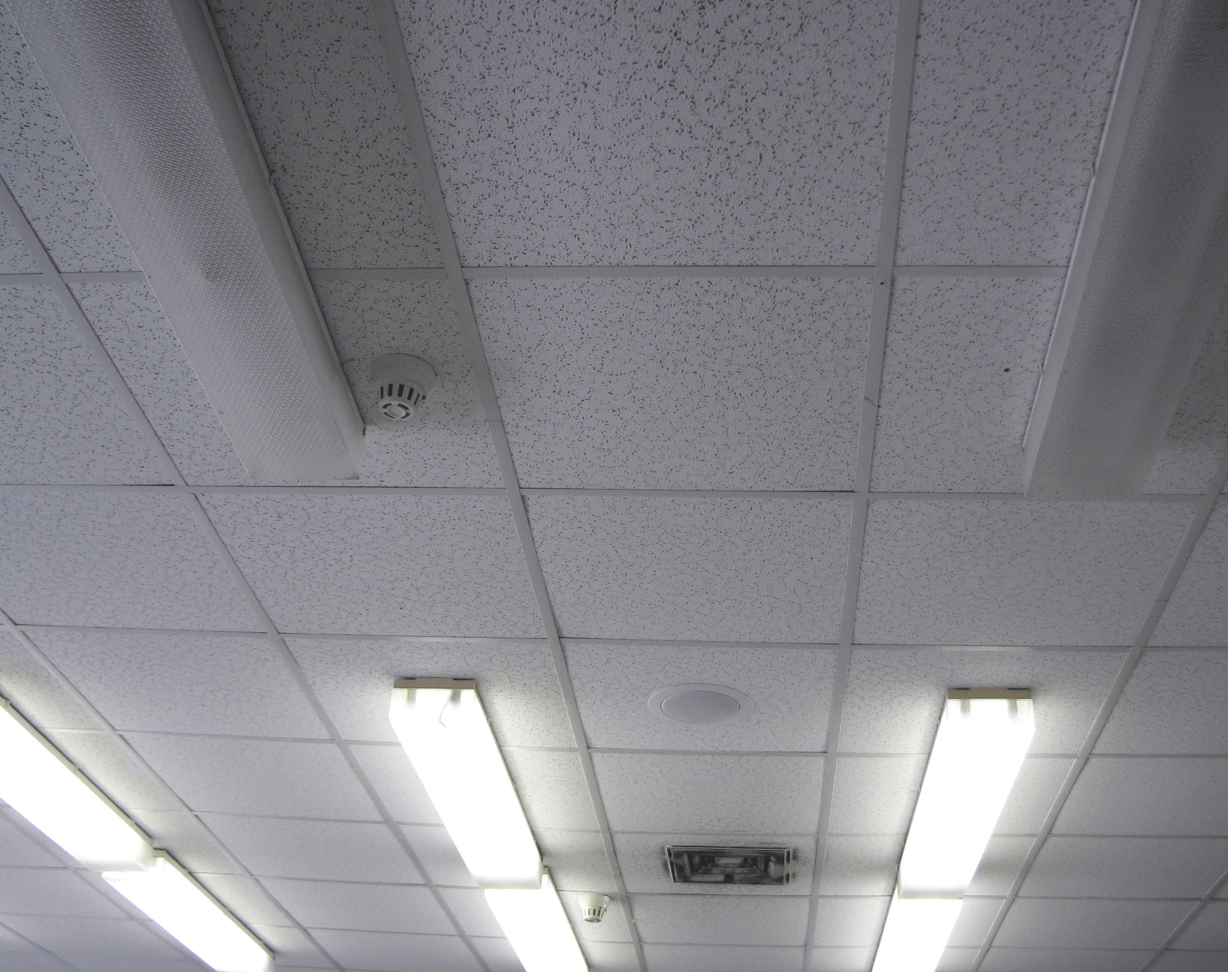 Ceiling Tiles and Panels Information