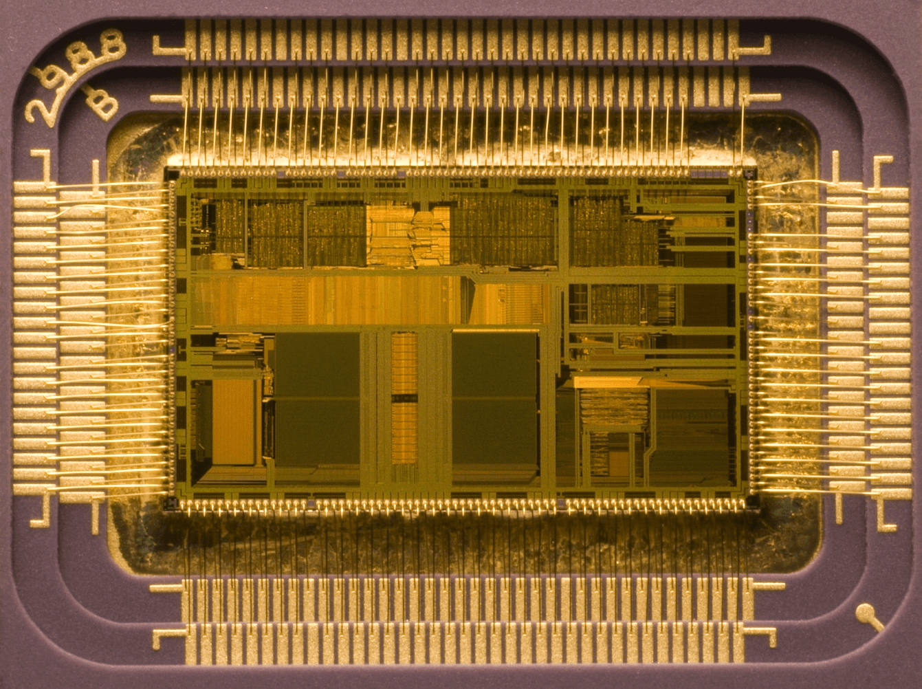 Fieldbus communications computer board