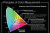 Infographic: Principles of Light & Color-Image