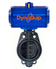 DynaQuip Controls - Pneumatic Automated PVC Ball Valves