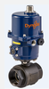 DynaQuip Controls - Electrically Actuated Carbon Steel Valve