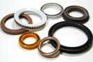 Sealing and Polymer Solutions, Saint-Gobain Seals
