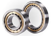 WD Bearing Group