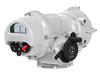 IQT Electric Part-turn Valve Actuators-Image