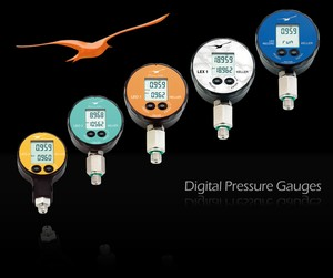 Digital Pressure Gauges-Image
