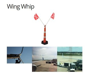 NEW Wing Whip!-Image