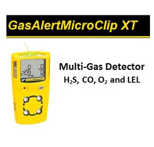 Multi-gas made easy: from BW Technologies-Image
