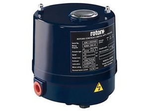 ROM/RBM Electric Actuator-Image