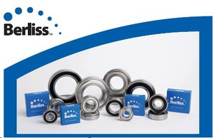 Electric Motor Quality Bearings-Image