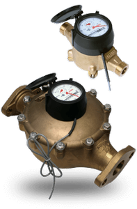 Easy-Read WM-NLD Positive Displacement Water Meter-Image