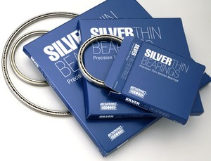 Silver Thin Bearings-Image