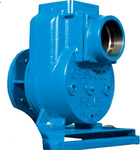 Griswold™ Pumps For Water Applications-Image
