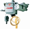 Explosion Proof Hoist-Image