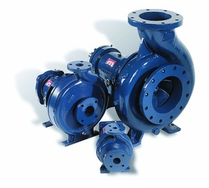 Griswold™ 811 Series ANSI Pumps For Oil-and-Gas-Image