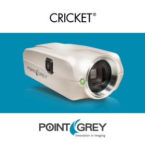 1080p60 IP Camera Features Low Light-Image