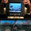 Waterproof Environmentally Sealed LCD Monitor-Image