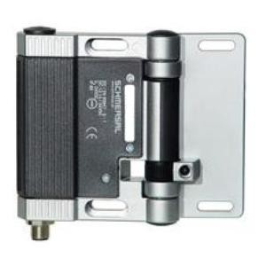 Adjustable Switching Point Hinged Interlock Switch-Image