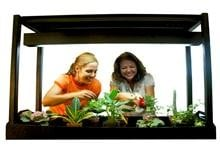 Plant Greenhouse Kit: Photosynthesis & Biology-Image