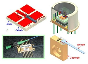 PH976DBR Series High-Power Edge-Emitting Lasers-Image
