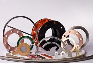 Standard Full Face Gaskets & Ring Gaskets -Image