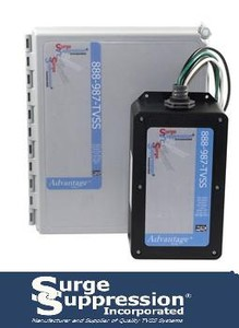 Surge Suppression Solutions for Amusement Park-Image