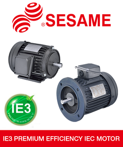 IE3 Premium Efficiency IEC Electric Motors-Image