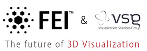 FEI acquires VSG-Image