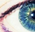 The Sensor That Works Like a Human Eye