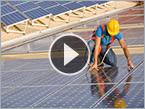 Tofu Ingredient Greens Solar Panels