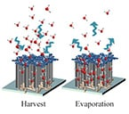 Nanotubes Take Water from Dry Air