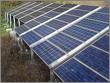 Nanoparticles Juice Solar Cells