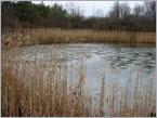 On Solar Pond